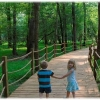 kids-on-bridge